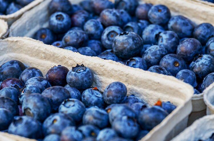 Blueberries 3474854 1920