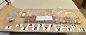 drogenfund-sbg-polizei.jpg 2105x869, 387 KB