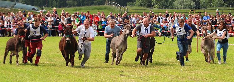 Eselrennen in Holzhausen 2018