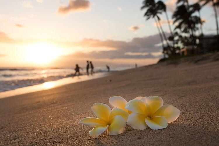 Hawaii Strandfoto