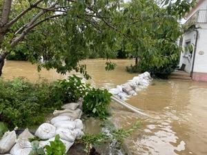 Hochwasser Waldhausen