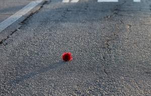 Weltgedenktag Straßenverkehrsopfer