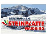 Steinplatte Waidring