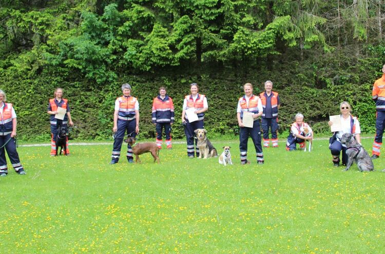 Rettungshunde 2