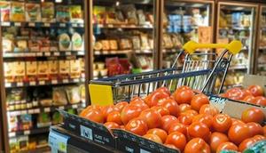 Einkaufen - Einzelhandel - Tomaten