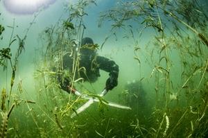 Mäharbeiten unter Wasser